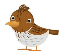Cartoon Animal Bird Lark Skyla...