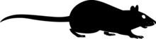 Rat Silhouette Vector Illustra...