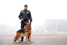 Male Police Officer With Dog Patrolling City Street