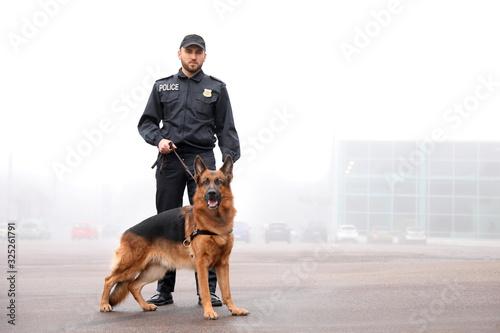 Fototapeta Male police officer with dog patrolling city street