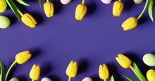 Easter Eggs And Yellow Tulip With Copy Space On Violet Background. Creative Design. 3d Rendering