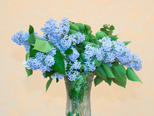 Bouquet Of Blue Lilac In A Crystal Vase