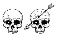 Illustration Of Human Skull Wi...