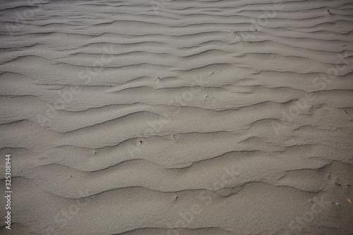 texture desert land sand dunes barkhans, deserts Canvas Print