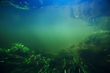 Underwater Freshwater Green La...
