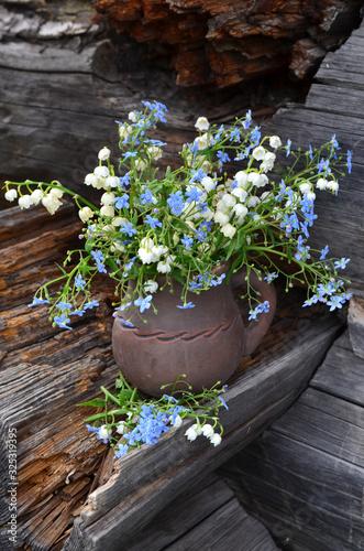 Fototapeta flowers in pots obraz na płótnie