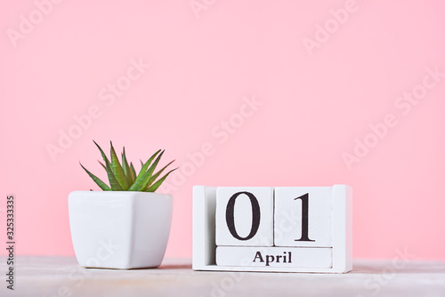 Wooden blocks calendar with date 1st april and plant on the pink background Canvas Print