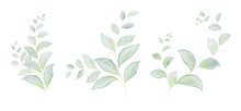 Watercolor Set Of Green Leaves