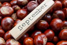 Decorative Autumn Calendar On ...
