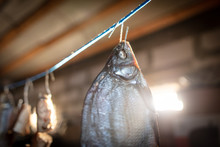 Salted Fish Dries On A Rope