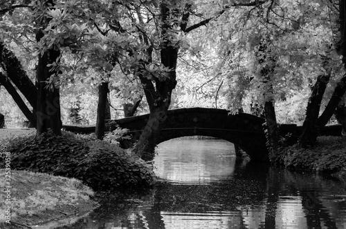 Photo puente en el parque en blanco y negro