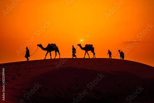 Fotografija Cameleers, camel Drivers at sunset