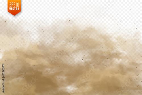 Cuadros en Lienzo Realistic dust clouds