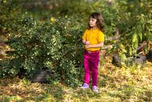 Girl In A Yellow T-shirt Picks Berries From A Bush Of A Symphoricarpos