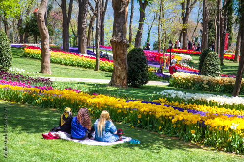 Fototapeta Rest people in Emirgan Park, Istanbul, Turkey, during the Spring Tulip Festival