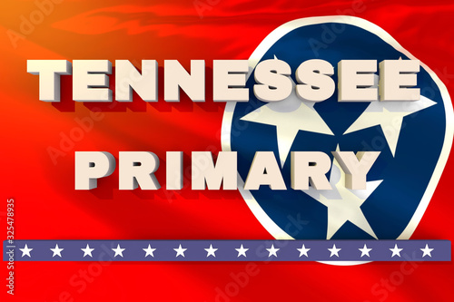 Tennessee state primary election day header or banner Canvas-taulu
