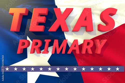 Obraz na plátne Texas state primary election day header or banner