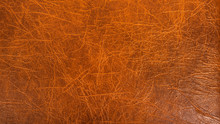Beautiful Brown Background - A...