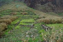 Brachliegende Felder In Achada...