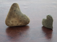 Heart Shaped Petoskey Stone Cl...