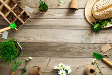 Gardening Tools And Plants On Wooden Table. Spring Garden Works Concept. Flat Lay, Top View