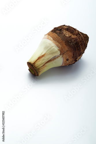 Close-Up Of Taro Over White Background Canvas Print