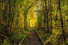 Tunnel Of Love. Railways. Autu...