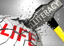 Illiteracy And Destruction Of ...