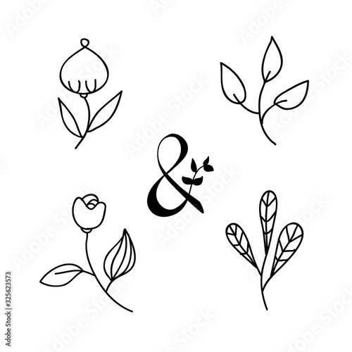 Hand drawn vintage ampersand and vector herbs and flowers such as rose, poppy Canvas Print