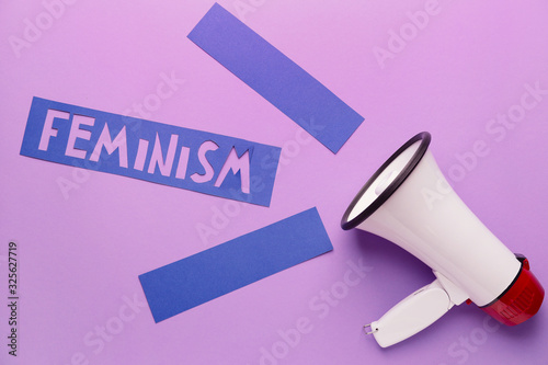 Megaphone with word FEMINISM on color background Wallpaper Mural