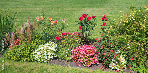 Fotomural flowerbed with blooming begonias, roses, potentilla shrub and green lawn