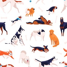Various Domestic Doggy Breeds ...