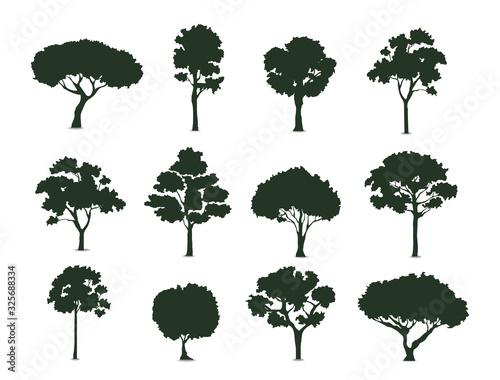 Trees silhouette on white background vector illustration EPS10