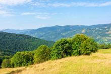 Sunny Mountain Landscape In Su...