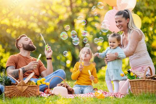 Fotografie, Obraz Happy family having picnic in the park