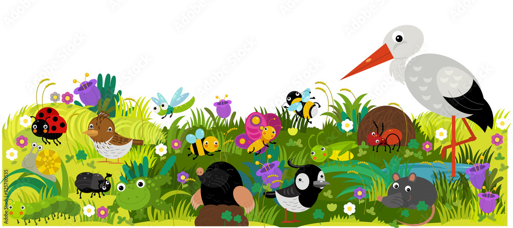 cartoon scene with different european animals rodents and bugs on the forest meadow illustration