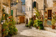 The street with flower pots in Valldemossa town