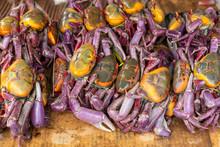 Ecuador, Near Quitpo A Stack Of Fresh Local Crabs.