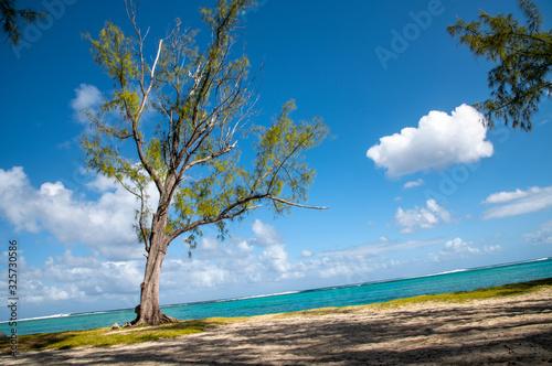 Fotografie, Obraz Le Morne public beach in Mauritius