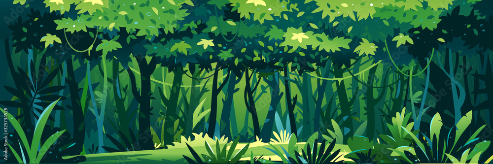 Fototapeta Wild wet dark jungle forest with trees, bushes and lianas, nature landscape with green jungle foliage and exotic plants growing on ground, horizontal banner with tropical plants on sunny day