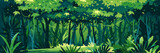 Wild wet dark jungle forest with trees, bushes and lianas, nature landscape with green jungle foliage and exotic plants growing on ground, horizontal banner with tropical plants on sunny day