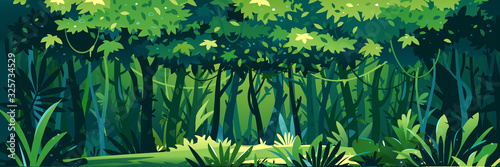 Cuadros en Lienzo Wild wet dark jungle forest with trees, bushes and lianas, nature landscape with