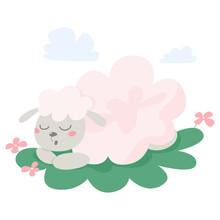 Cute Sleeping Sheep. Domestic Animal With White Fur.
