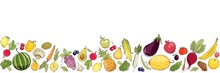 Vegetables And Fruits. Vector ...
