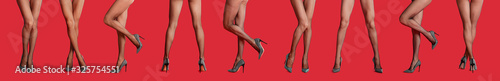 Fototapeta Collage of women wearing tights on red background, closeup of legs. Banner design obraz