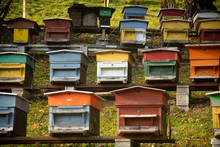 Rows Of Colorful Bee Hives On The Side Of A Hill