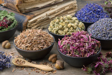 Bowls And Mortars Of Dry Medicinal Herbs: Lavender, Cornflower, Coneflower, Daisies. Healing Herbs Assortment And Old Books On Wooden Table. Herbal Medicine.