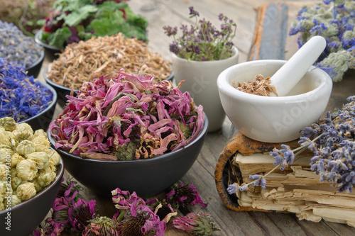 Bowls and mortars of dry medicinal herbs: lavender, cornflower coneflower, daisies, thyme flowers, oak bark Canvas Print