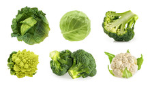 Different Types Of Cabbage Isolated On White Background