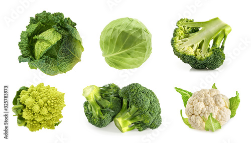 Obraz Different types of cabbage isolated on white background - fototapety do salonu